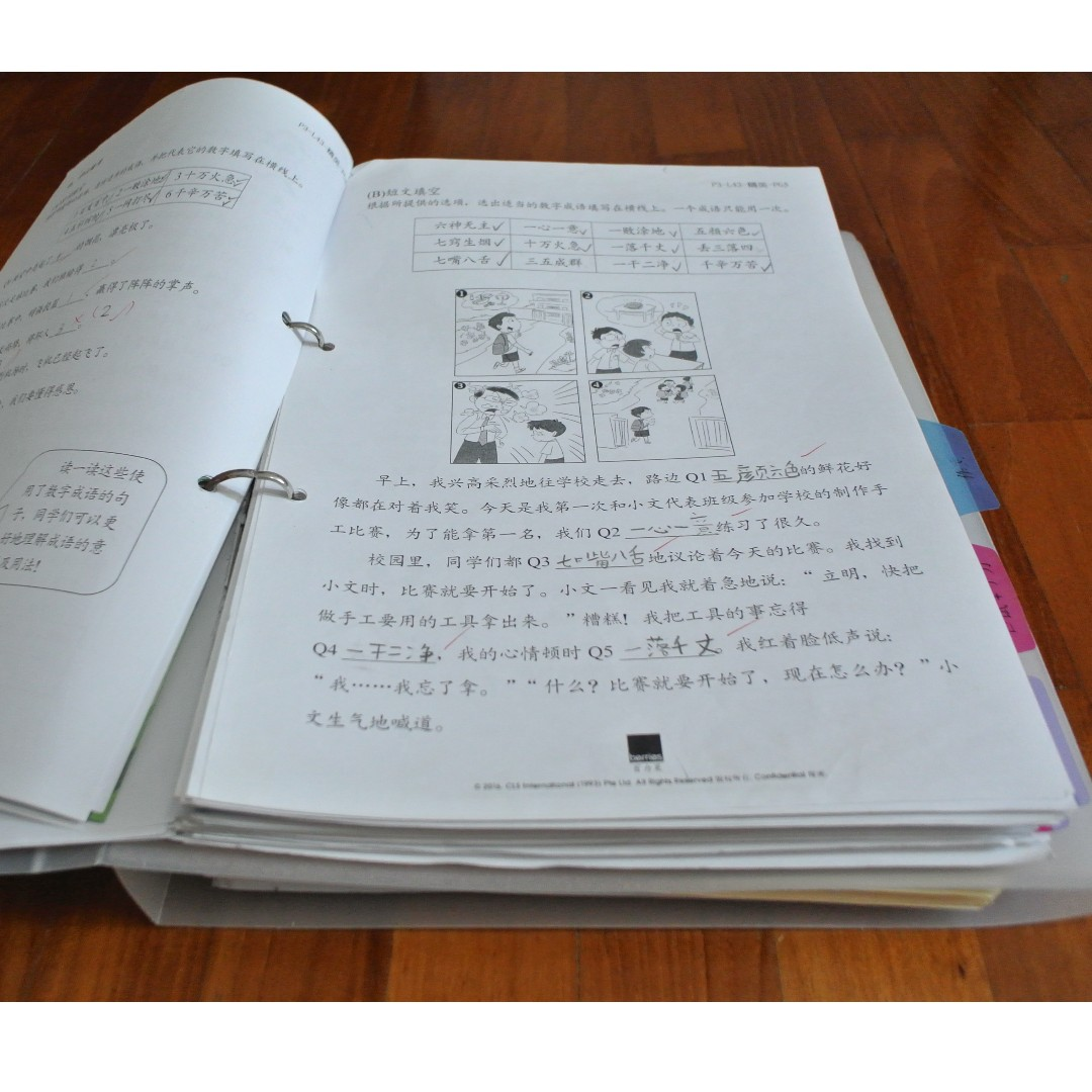 Chinese Berries 2016 P3 full year material, Books & Stationery ...