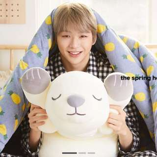 WANNA ONE GO x the spring home (20th Jan - 30th Jan)