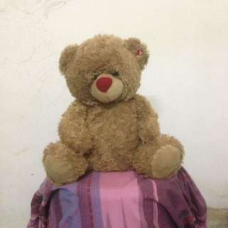 Teddy bear soft toys/as a gift