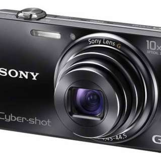 Sony DSC-WX100 Compact 18.2MP 10X optical zoom digital camera