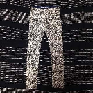 🚚 Lilas豹紋內搭褲 15號
