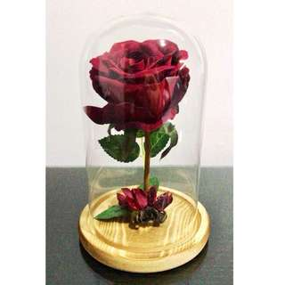 Valentine's Day Gift / Rose Bell Jar