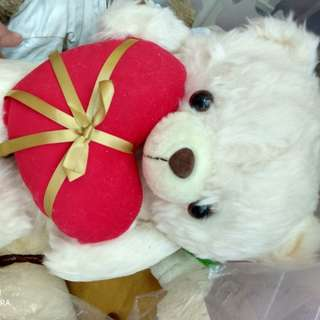 Hearty bear