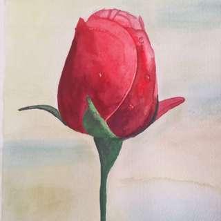 Drop of Rose - original watercolour painting