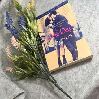 Novel one day by David Nicholls