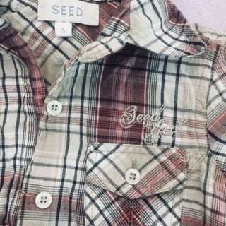 Blouse seed