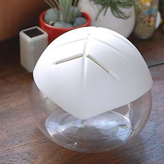 Humidifier and Aroma Diffuser