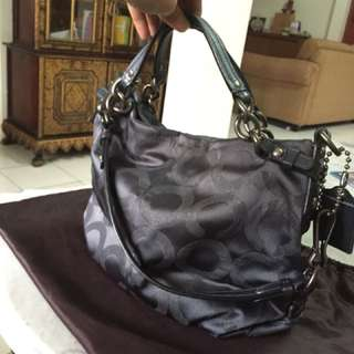 Coach bag (gray)