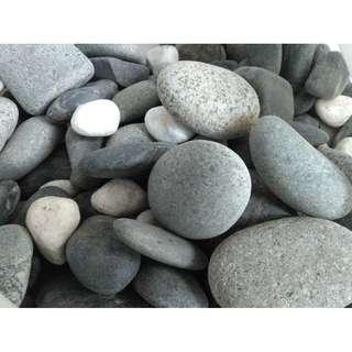 Pebbles various shapes colors sizes