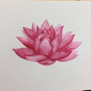 Water lotus - watercolour painting