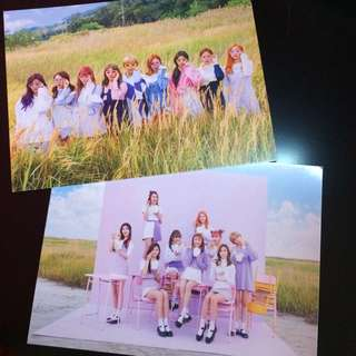Official Twice Card