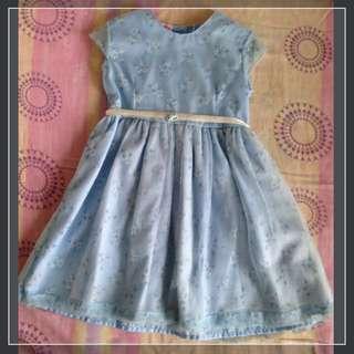 Powder Blue Tulle Dress