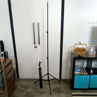 Light stand pair