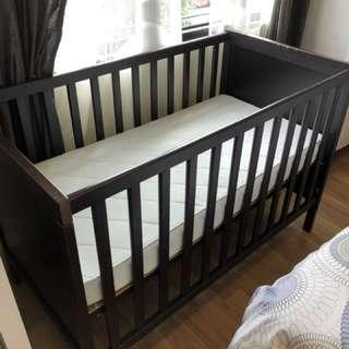 Baby Cot & Mattress