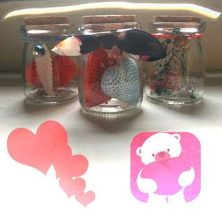 🌹 Valentine flower Special!! Pretty Red & Blue baby breath in a contianer!