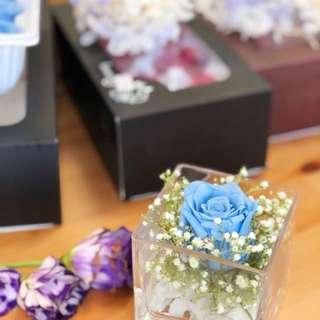 Goodbye Monday blues (Preserved flower)