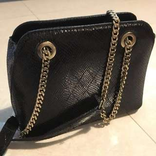 ZARA WOMEN limited edition glossy black snake skin bag