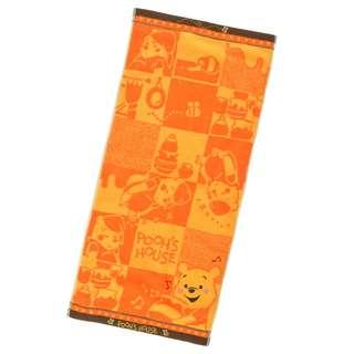 Japan Disneystore Disney Store Winnie the Pooh POOH'S HOUSE Face Towel