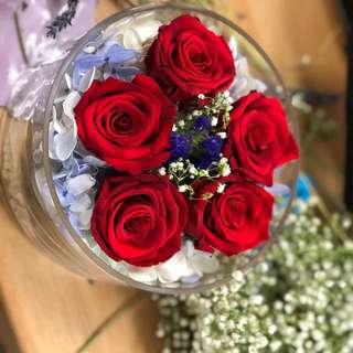 Mystery Lover (Preserved flower)