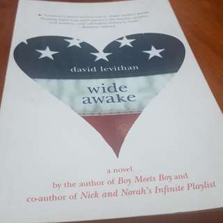 Wide Awake by David Leviathan