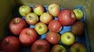 香又甜的蘋果   20顆   蘋果
