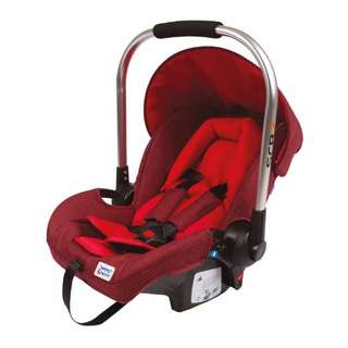Carrier Carseat