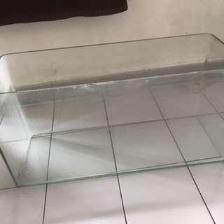 Long glass aquarium