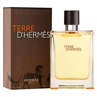 Hermès Men's Terre