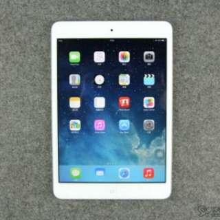 (極少用) Apple iPad mini 2