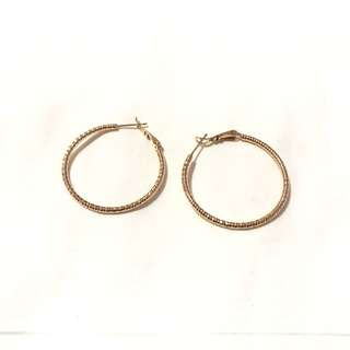 Hoop Earrings 2