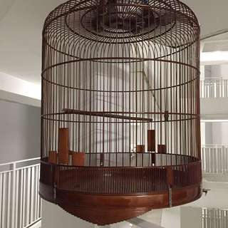 "Shama 25"" mee sua cage"
