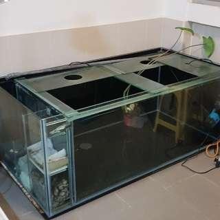 5 feet tank
