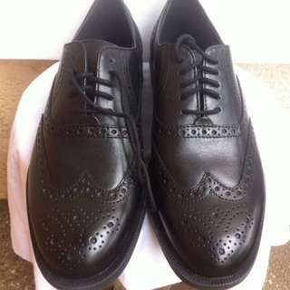 Bnew Cole Haan wingtip oxford leather shoes size 7-11M