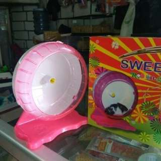 Hamster wheel rolling jogging wheel sugar glider