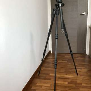 Gitzo Tripod with Head