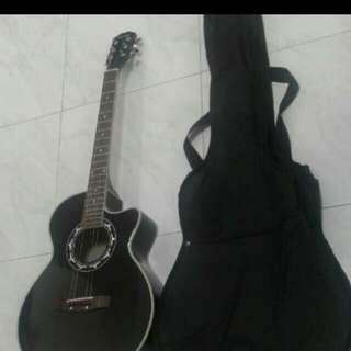 Brand New Fantast Brand Guitar With Brand New Guitar Bag Direct From The Supplier
