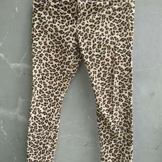 Celana cewek motif macan - cherokee