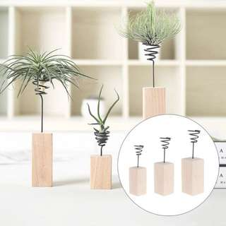 Customize Name - Wooden Air Plant Stand