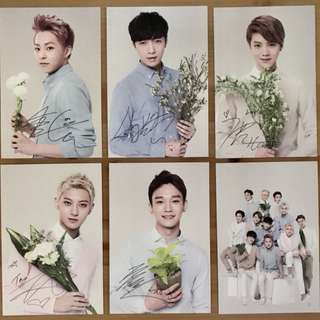 EXO M 2014 Nature Republic Photocards