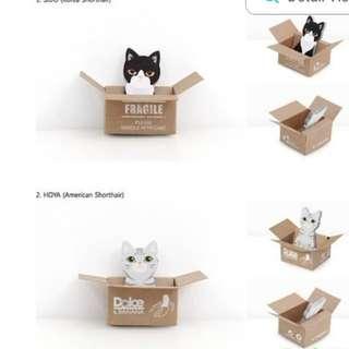 Kitty boxes