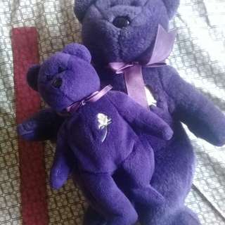 Violet Teddy Bear Set