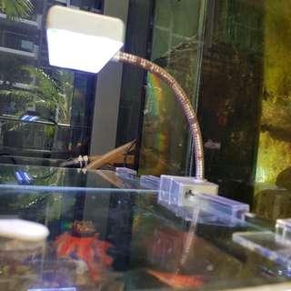 Nano tank light