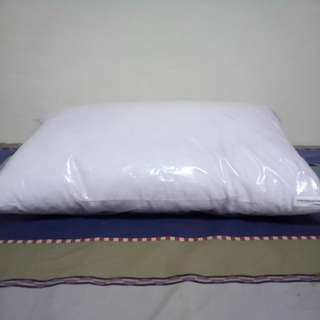 Ambassador Bed pillow