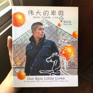 Elvin Ng's 'Our Epic Little Lives' Book