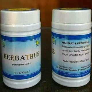 Herbatus