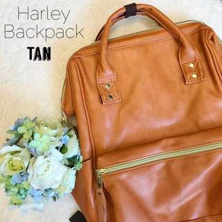 Harley Bag pack