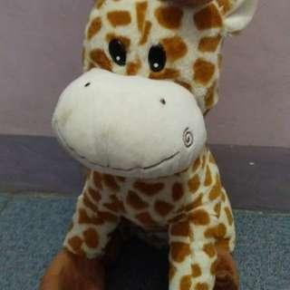 Baby Giraffe 💕