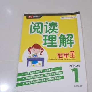 阅读理解 primary 1