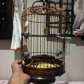 Mata putih rosewood cage ( used but still new )