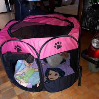 Pet Tent : Pet Carrier
